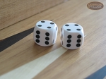 Precision Dice - Opaque White - 5/8 in. - 1 pair (2 die) - Item: 1200
